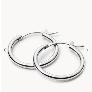 NWT Fossil Stainless Steel Hoop Earrings